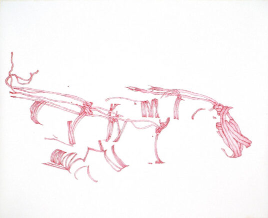 Pink Rope, 2006